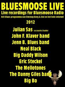 bluesmoose live 2012