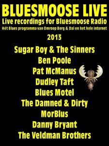 bluesmoose live 2013