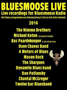 bluesmoose live 2014