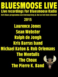 bluesmoose live 2015